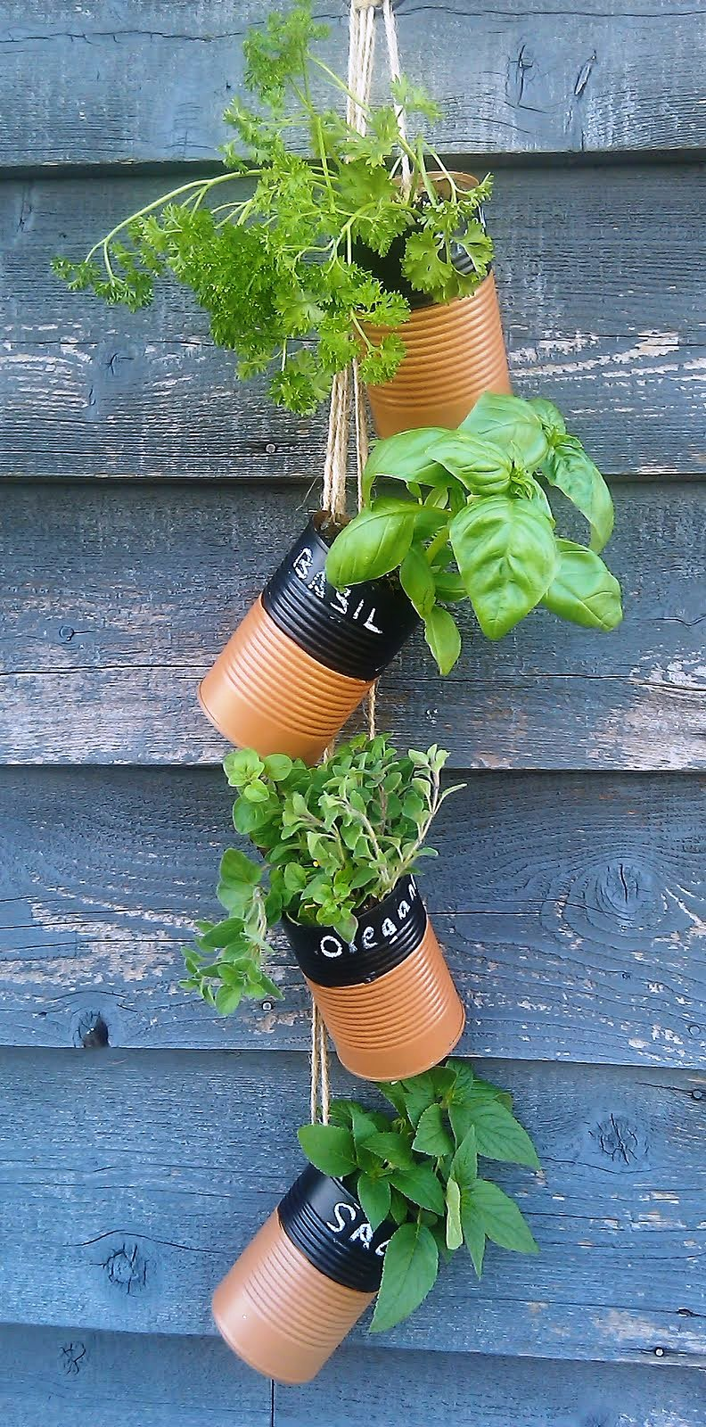 upcycled-can-herb-garden1